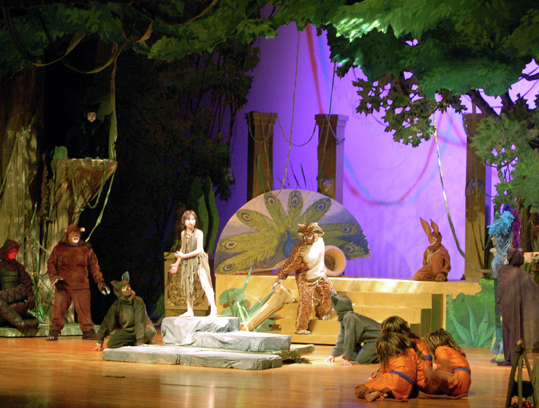 Jungle Book Costume Ideas http://www.stagedesignbyjoseph.com/the-jungle-book.html